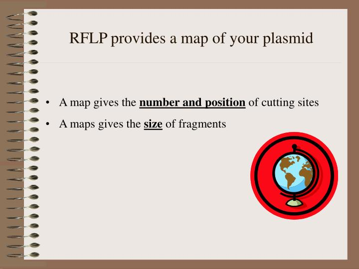 RFLP provides a map of your plasmid