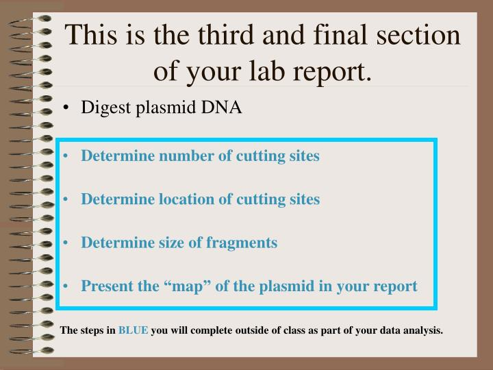 This is the third and final section of your lab report