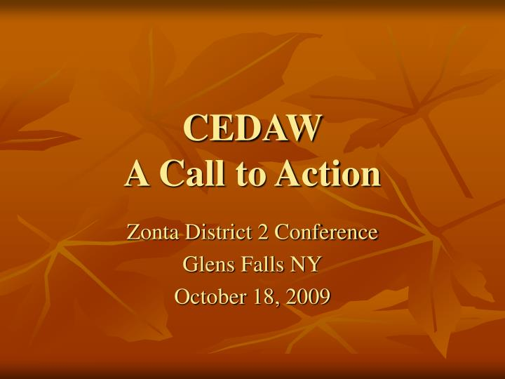 cedaw a call to action n.