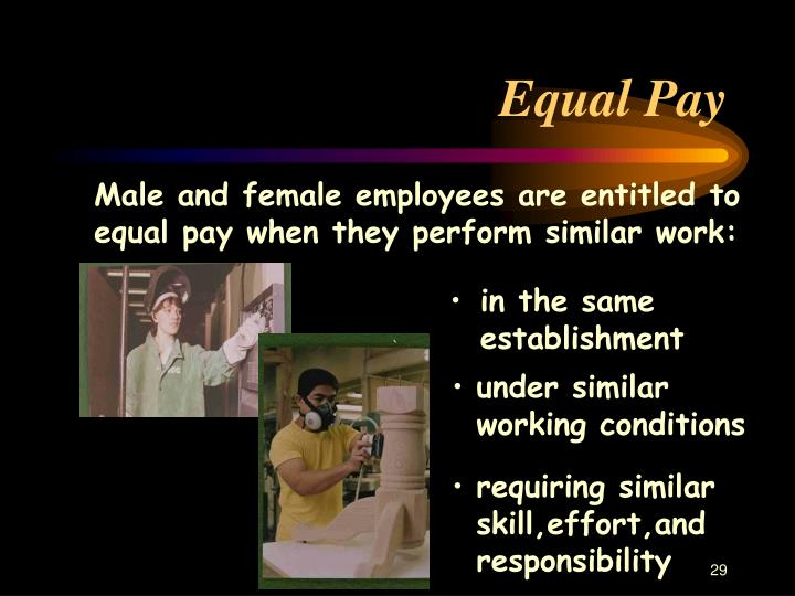 Male and female employees are entitled to equal pay when they perform similar work: