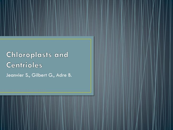 chloroplasts and centrioles n.