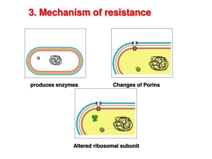 3. Mechanism of resistance