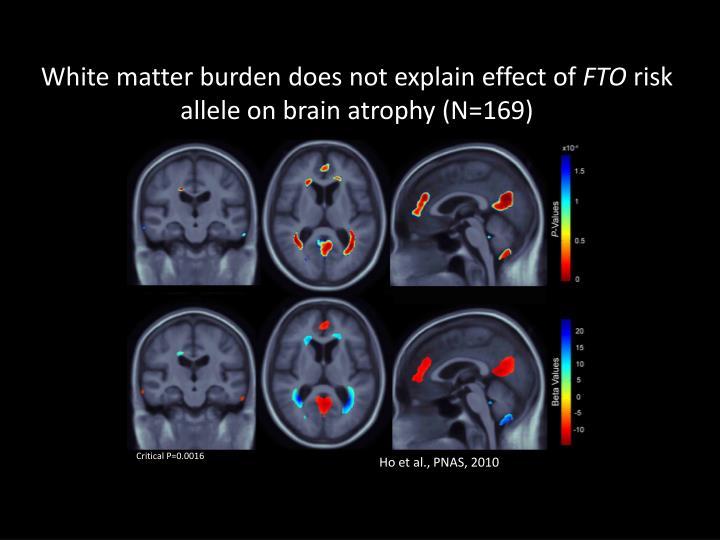 White matter burden does not explain effect of