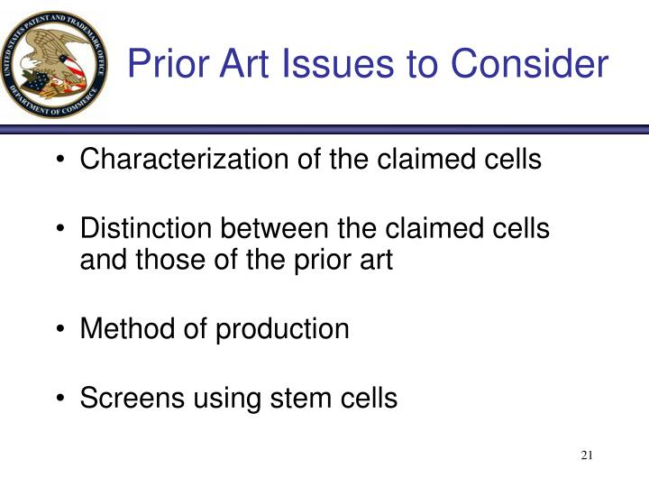 Prior Art Issues to Consider