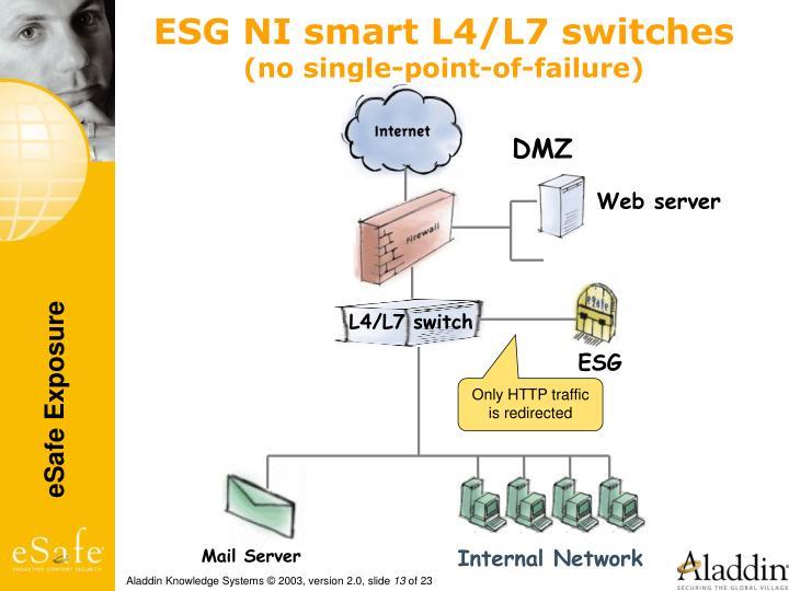 ESG NI smart L4/L7 switches