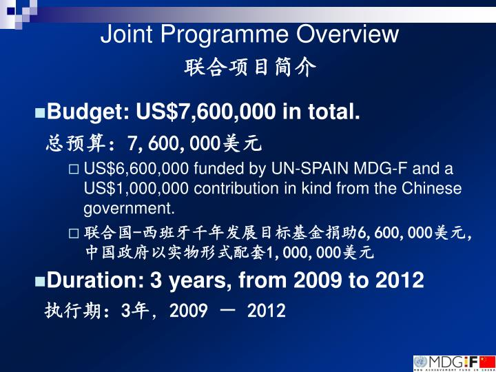 Joint programme overview
