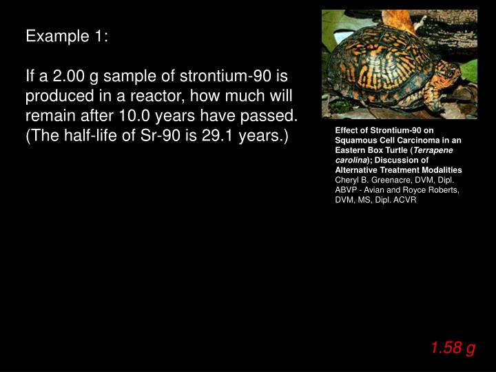 Effect of Strontium-90 on Squamous Cell Carcinoma in an Eastern Box Turtle (