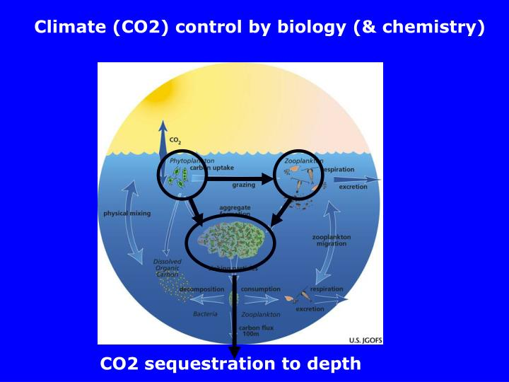 Climate (CO2) control by biology (& chemistry)
