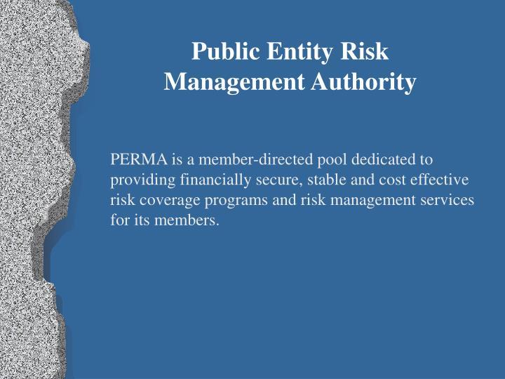 Public Entity Risk