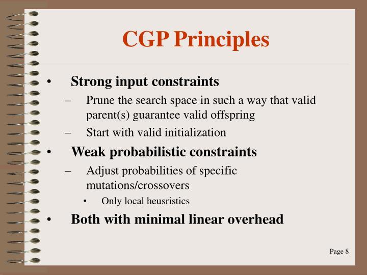CGP Principles