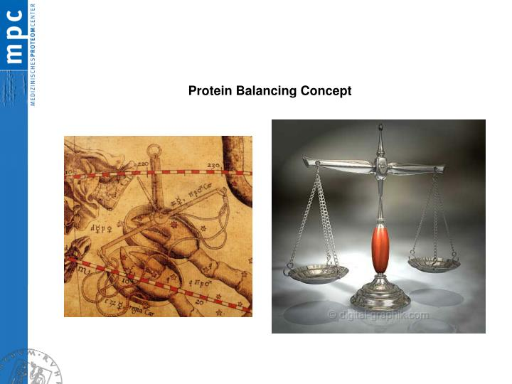 Protein Balancing Concept