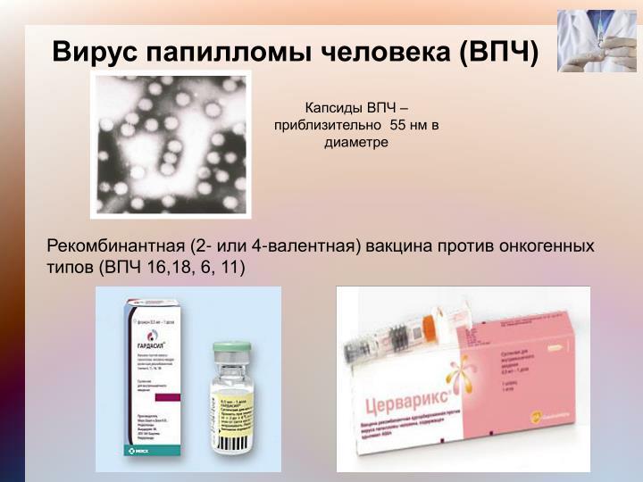 Помогает ли иммунал от впч - Jks-k.ru
