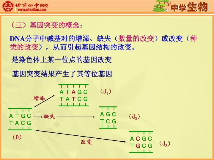 (三)基因突变的概念: