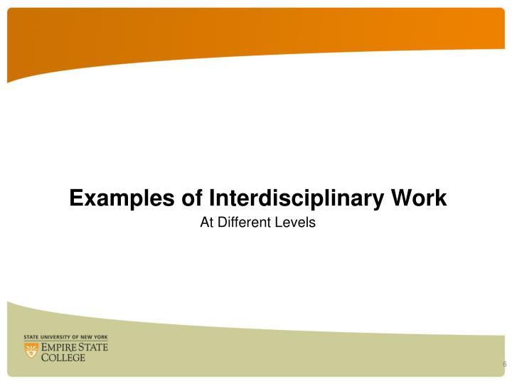 Examples of Interdisciplinary Work