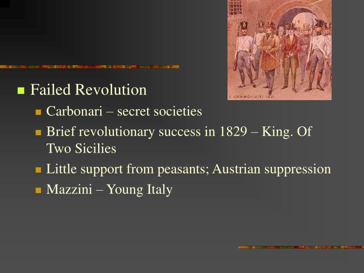 Failed Revolution