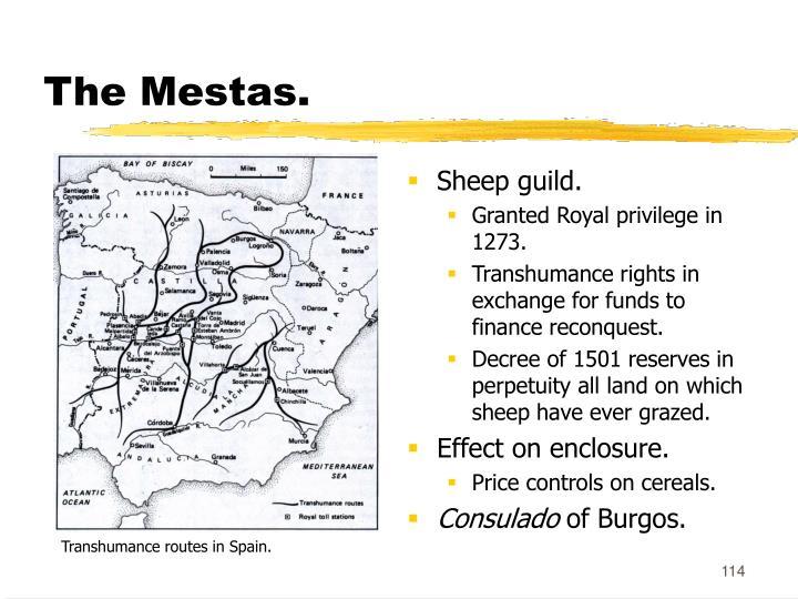 The Mestas.