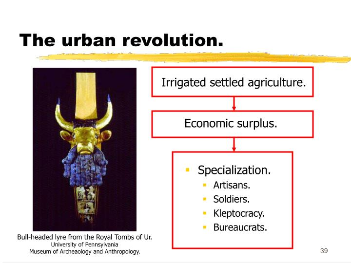 The urban revolution.
