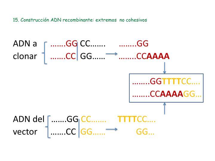 15. Construcción ADN recombinante: extremos  no cohesivos