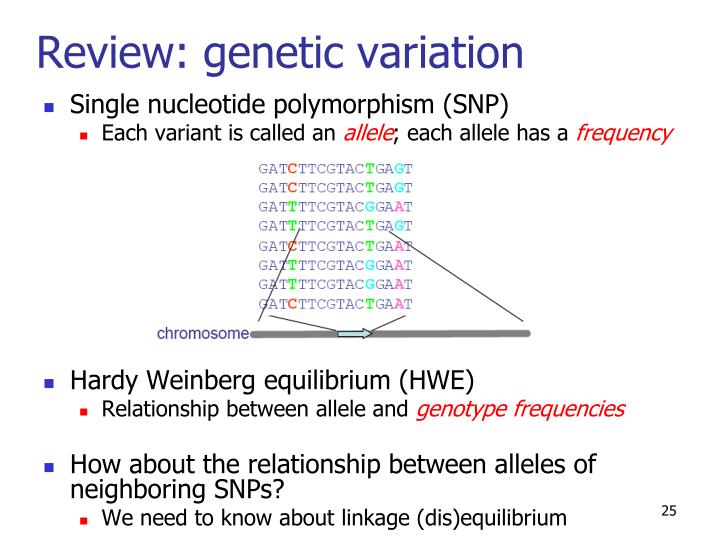 Review: genetic variation