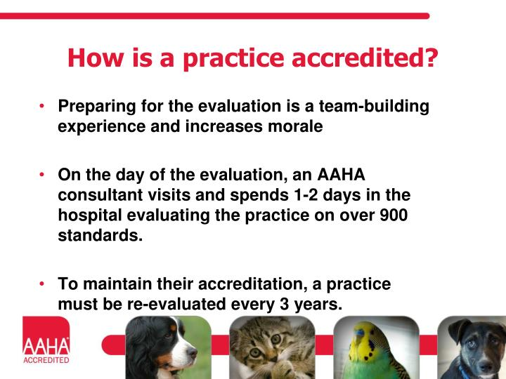 How is a practice accredited?