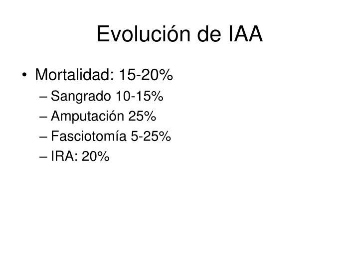 Evolución de IAA