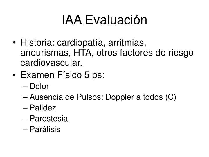 IAA Evaluación