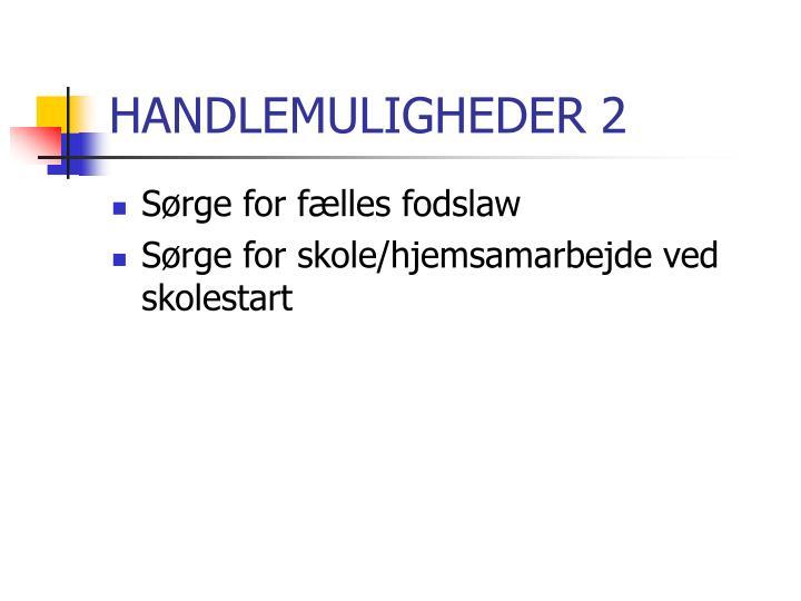 HANDLEMULIGHEDER 2