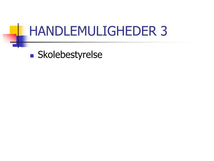 HANDLEMULIGHEDER 3