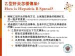 how is hepatitis b spread