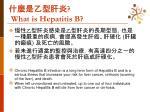 what is hepatitis b1