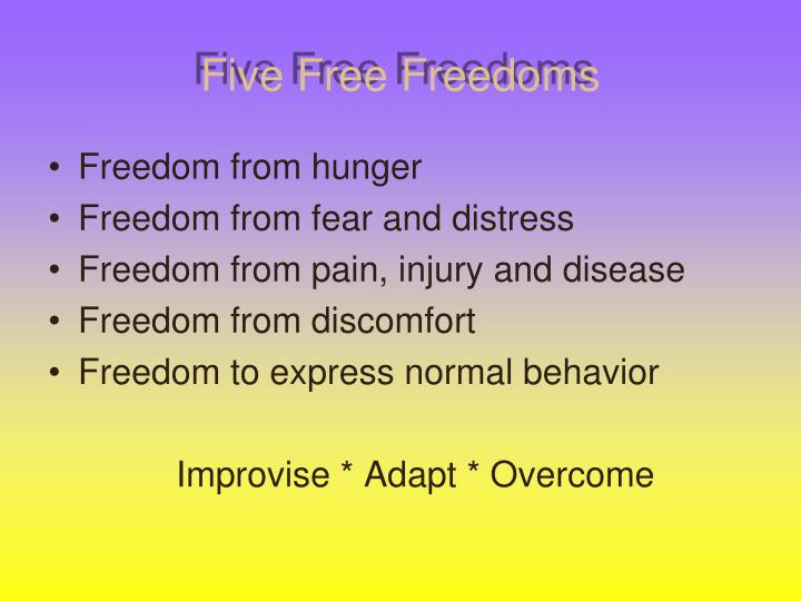 Five free freedoms