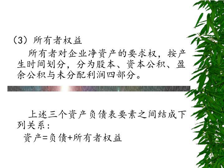 (3)所有者权益