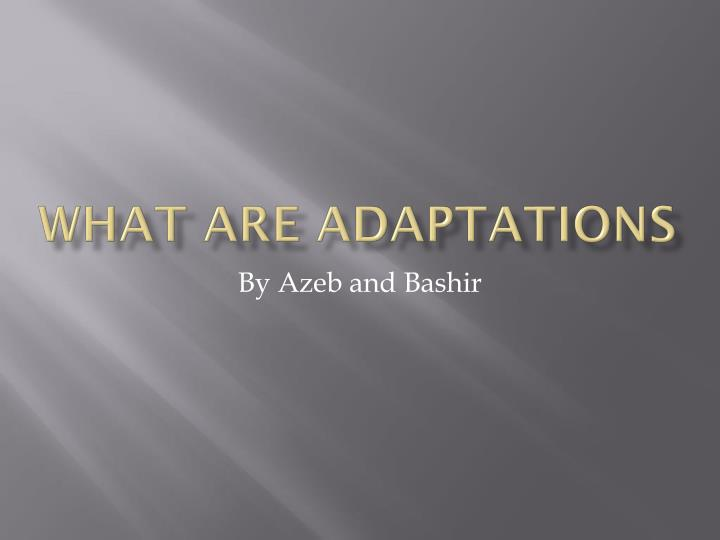 what are adaptations n.