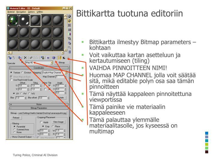 Bittikartta tuotuna editoriin