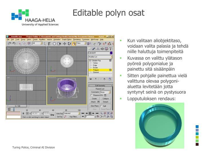 Editable polyn osat