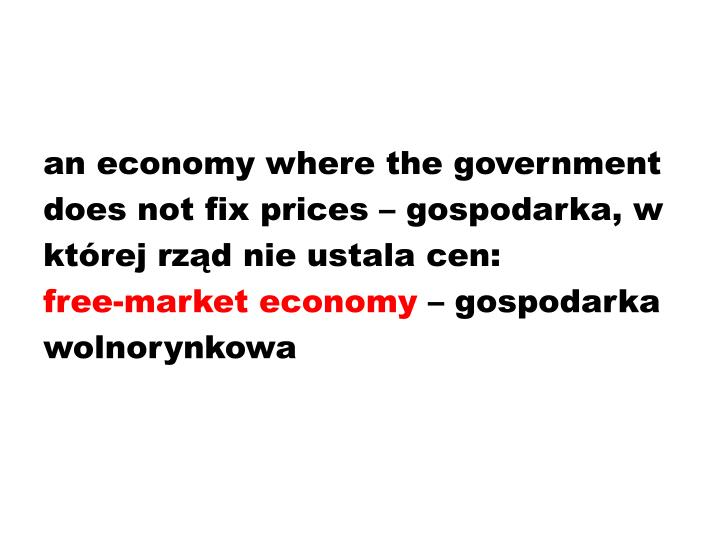 an economy where the government