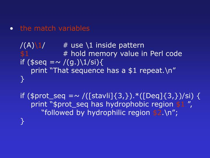 the match variables