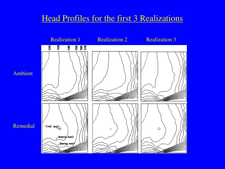 Head Profiles for the first 3 Realizations