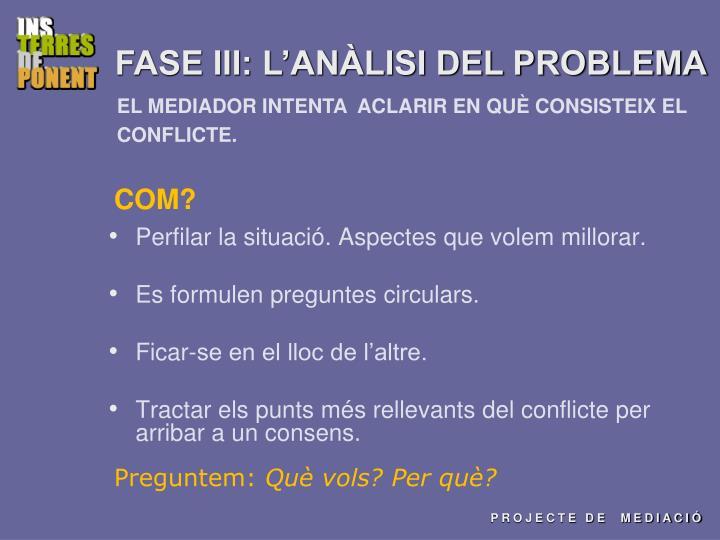 FASE III: L'ANÀLISI DEL PROBLEMA