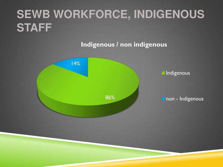 SEWB Workforce, Indigenous Staff