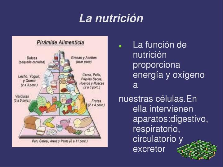 La nutrici n1