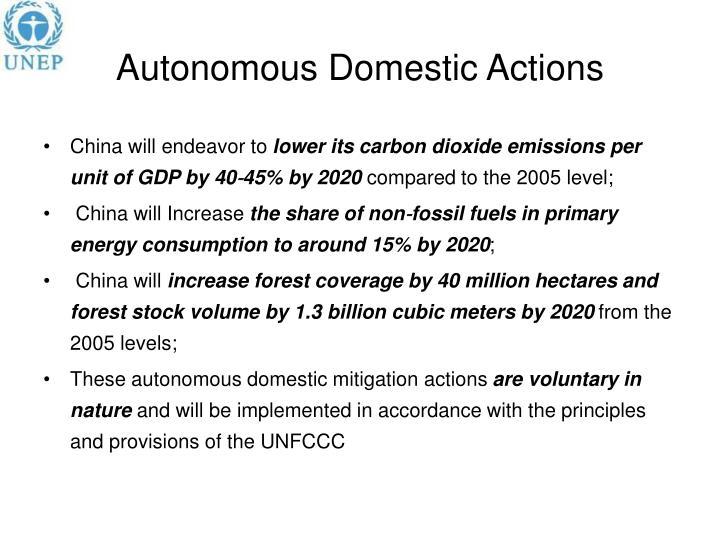 Autonomous Domestic Actions