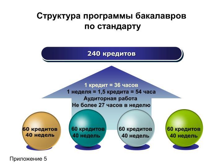Структура программы бакалавров
