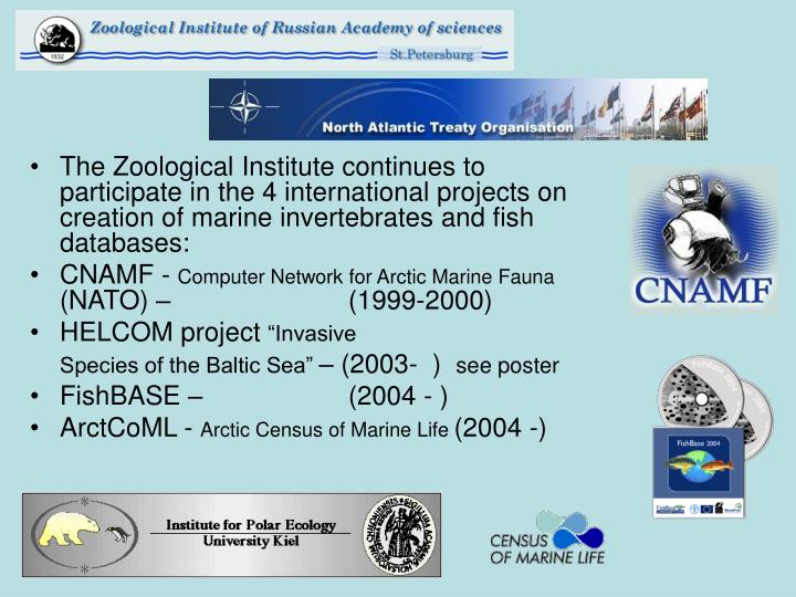The Zoological Institute continues to participate in the 4 international projects on creation of marine invertebrates and fish databases: