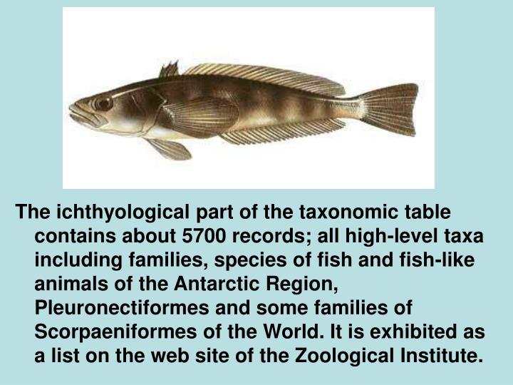 The ichthyological part of the taxonomic table contains about 5700 records; all high-level taxa including families, species of fish and fish-like animals of the Antarctic Region, Pleuronectiformes and some families of Scorpaeniformes of the World. It is exhibited as a list on the web site of the Zoological Institute.