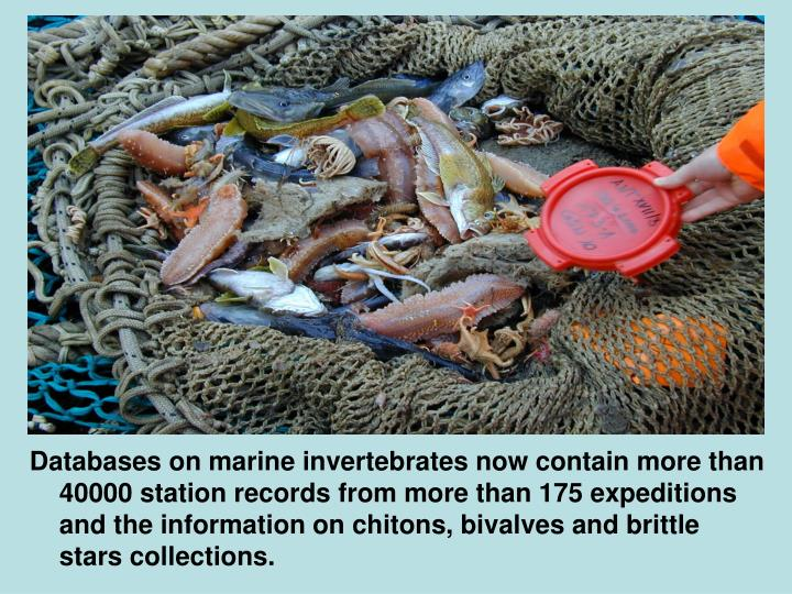 Databases on marine invertebrates now contain more than 40000 station records from more than 175 expeditions and the information on chitons, bivalves and brittle stars collections.