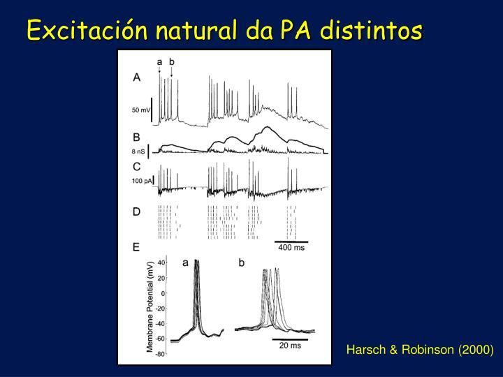 Excitación natural da PA distintos