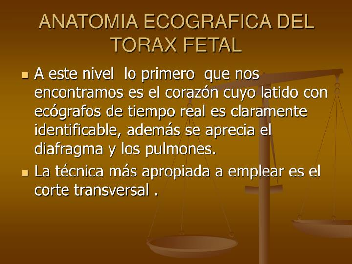 PPT - CORAZON FETAL PowerPoint Presentation - ID:3875220