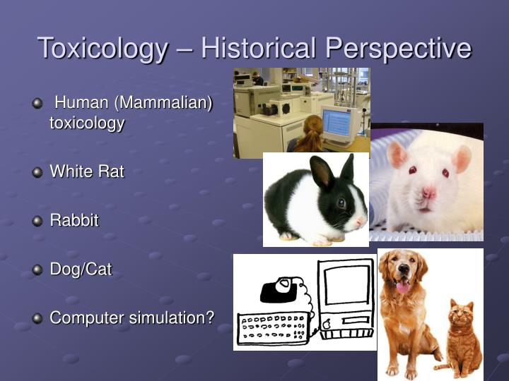 Toxicology historical perspective