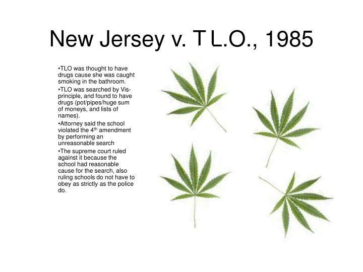 new jersey vs t l o standards for New jersey v tlo, 469 us 325 (1985), is a decision by the supreme court of  the united  he disagreed, however, with the new standard set down by the  court, which he felt was a departure from the traditional probable cause  approach.